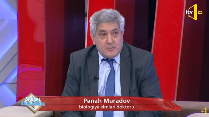 Mikrobioloq alim İctimai TV-də koronavirusun yeni mutasiyasından danışıb