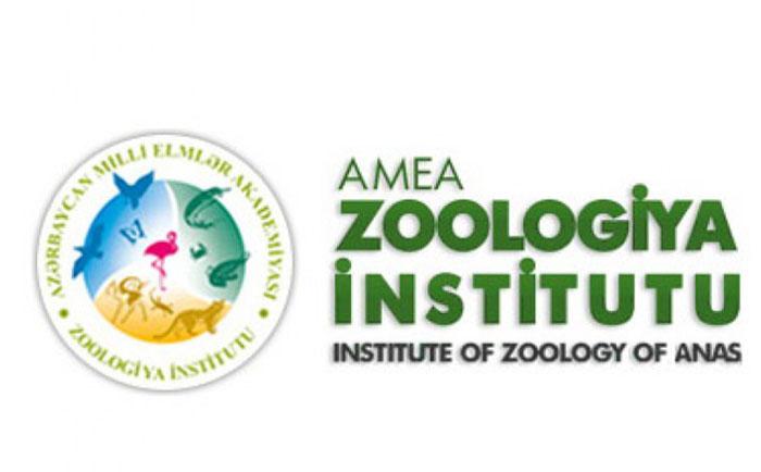 Zoologiya İnstitutu müsabiqə elan edir