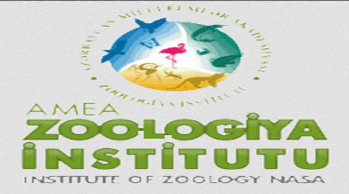 Zoologiya İnstitutunun əməkdaşları beynəlxalq vebinarlarda iştirak ediblər